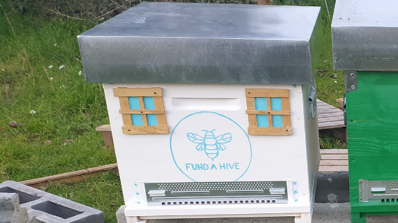 Track the progress of Fund a Hive